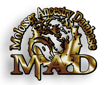 MAD-Logo-PNG2