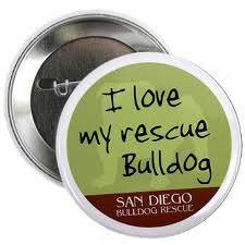 san_diego_bulldog_rescue
